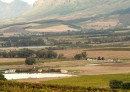 0.59604300-1399222664-Banner-South-Africa-Winelands-SAT-000-0148G.jpg